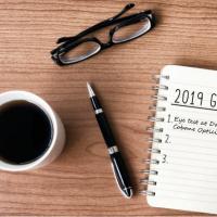 NY resolution 2019